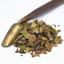 Biała herbata White China Pai Mu Tan 7,00zł